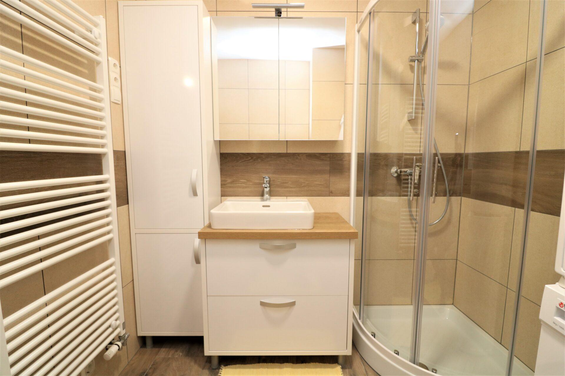Prenova doma kopalnica 2